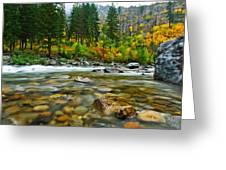 Wenatchee River Greeting Card by Dan Mihai