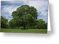 Wenham Ma Farm Tree Tender Crop Farm Greeting Card