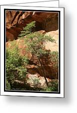 West Fork Oak Creek View Greeting Card