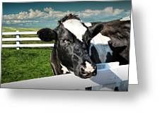 West Michigan Dairy Cow Greeting Card
