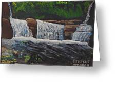 West Virgina Water Falls Greeting Card