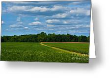 West Virginia Field  Greeting Card