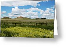 Western Color Greeting Card