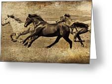 Western Flair Greeting Card
