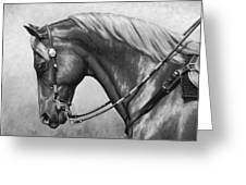 Western Horse Black And White Greeting Card