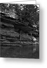 Westforkwhiteriver-bw Greeting Card