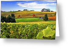 Westward From Domaine Drouhin Greeting Card