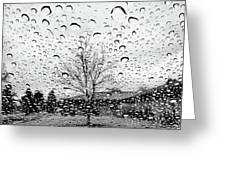 Wet Car Window B Greeting Card