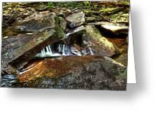 Wet Rocks Greeting Card