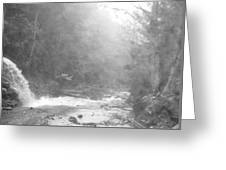 Wet Trail Greeting Card
