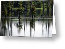 Wetland Greeting Card