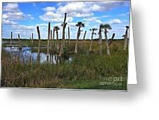 Wetland Palms Greeting Card