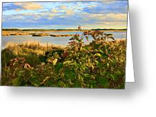 Wetlands In Cape Breton Greeting Card