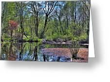 Wetlands Lake Greeting Card