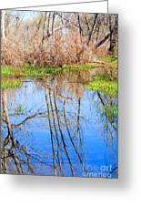 Wetlands Viewing Area In Chatfield State Park Greeting Card
