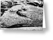 Whake Driftwood Greeting Card