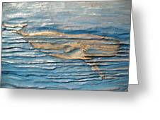 Whale Greeting Card by Doris Lindsey