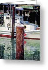 Wharf Gull Greeting Card