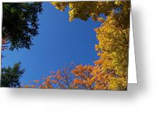 What A Day - Photograph Greeting Card