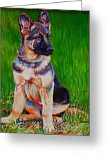 What Waits For You In The Green Green Grass Of Home Greeting Card