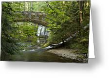 Whatcom Falls Bridge Greeting Card