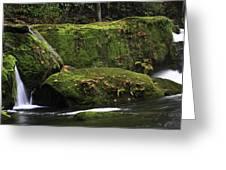 Whatcom Falls Park Greeting Card