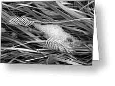 Wheat And Ice Greeting Card