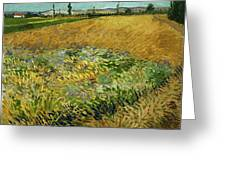Wheat Field With Alpilles Foothills In The Background At Wheat Fields Van Gogh Series, By Vincent  Greeting Card