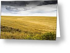 Wheat Fields With Storm Greeting Card