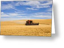 Wheat Harvest Greeting Card by Mike  Dawson