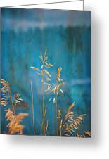 Wheat On Blue 1 Greeting Card