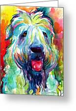 Wheaten Terrier Dog Portrait Greeting Card
