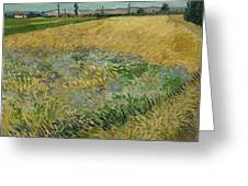 Wheatfield Arles, June 1888 Vincent Van Gogh 1853 - 1890 Greeting Card