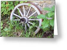 Wheel Walk Greeting Card