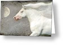 When Horses Dream Greeting Card