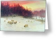 When The West With Evening Glows Greeting Card