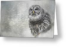 When Winter Calls Owl Art Greeting Card