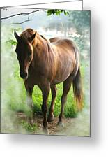 When You Dream Of Horses Greeting Card