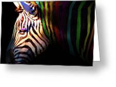 When Zebras Dream 7d8908 Square Greeting Card