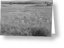 Where Custer Fell, Little Big Horn Greeting Card