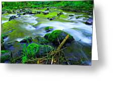 Where The Golden Waters Flow Greeting Card