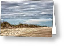 Where The Sea Turtles Nest Greeting Card