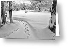 Where The Sidewalk Ends Greeting Card