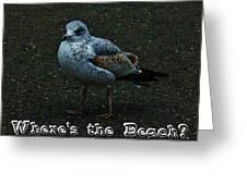 Where's The Beach Greeting Card