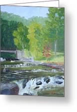 Whetstone Gulf State Park Ny Stream Greeting Card
