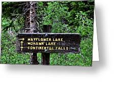 Which Way To Mayflower Lake Greeting Card