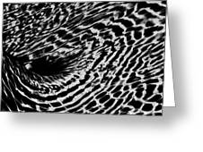 Whirlpool Abstract - Bw Greeting Card