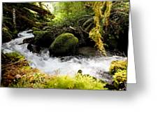 Whiskey Bend Trail  Greeting Card