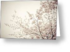 Whisper - Spring Blossoms - Central Park Greeting Card