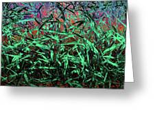 Whispering Grass Greeting Card